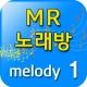 월량대표아적심 홍진영 노래방