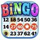 Bingo multiplayers Free